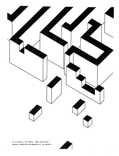 Robert Morris, 'Inmate Work Project: Perpetual Construction and Dismantling of the Labyrinth ', 1978