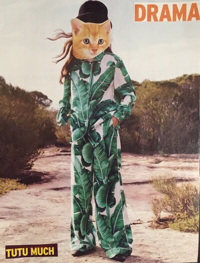 Danielle Georgiou, 'Drama Cat', 2016