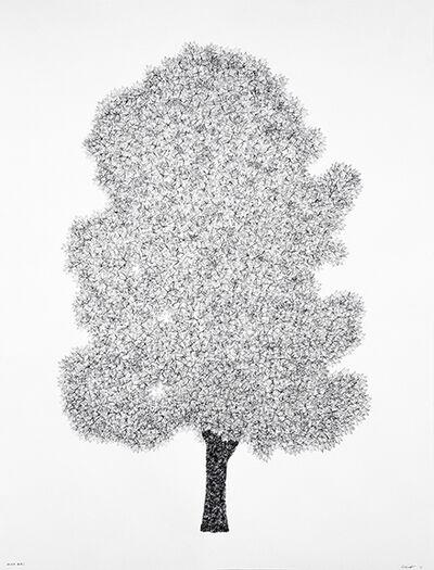 John Salvest, 'Silver Maple', 2017