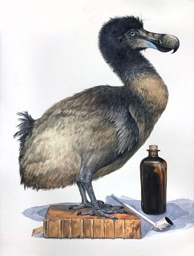 Thomas Broadbent, 'The Last Dodo', 2019