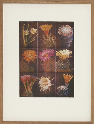 Edouard Wolton, 'Fleurs de cactus', 1100