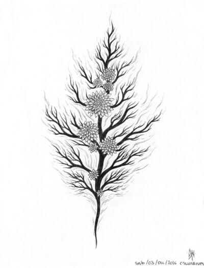 Maximiliano Navarrete, 'Plant (Study)', 2016
