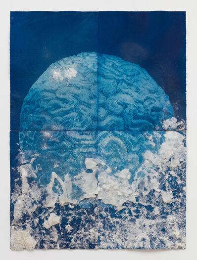 Andrea Chung, 'Brain Coral', 2019