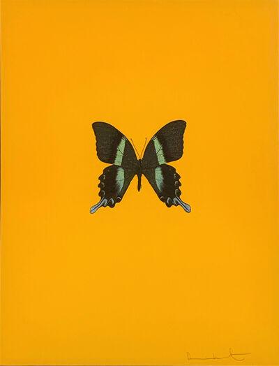 Damien Hirst, 'Six Butterflies III', 2011