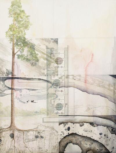 Christine Ödlund, 'P. sylvestris Tree Antenna', 2019