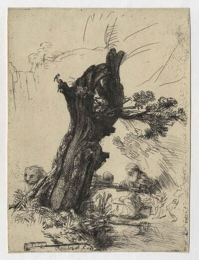 Rembrandt van Rijn, 'St. Jerome beside a Pollard Willow', 1648