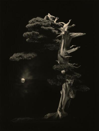 Yamamoto Masao, '#4001'