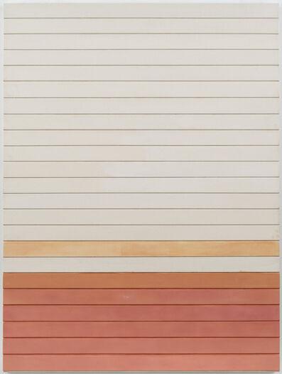 Luke Diiorio, 'untitled (the salmon run)', 2017