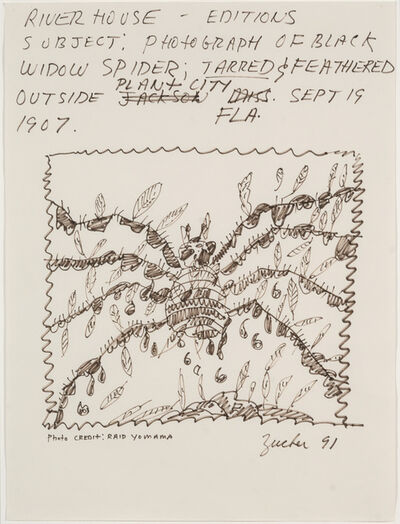 Joe Zucker, 'Subject: Photograph of Black Widow Spider: Tarred & Feathered Outside Plant City, FLA, Sept 19, 1907 (Riverhouse Editions Project)', 1991