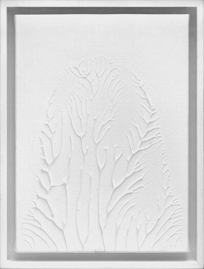 Thomas Tronel-Gauthier, 'Peinture Blanche F4 #1', 2016