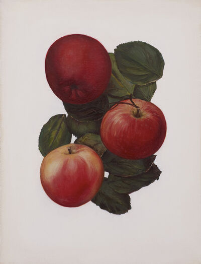 Jen Mazza, 'Untitled 1 (3 Apples)', 2014