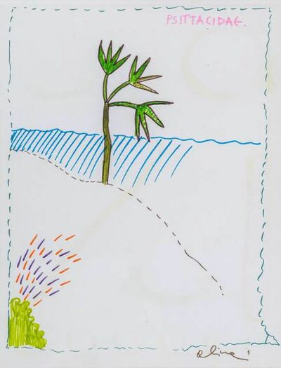 Luca Alinari, 'Psittacidae'
