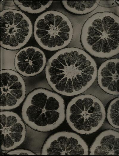Jenny Sampson, 'lemons, black II', 2015