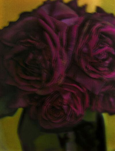 Sarah Moon, 'Les Roses', 1998