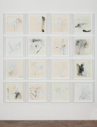 Joseph Havel, 'First Flowers: Vallejo #1-#16'