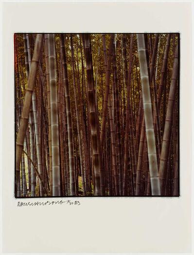 Robert Rauschenberg, 'Studies for Chinese Summerhall', 1983