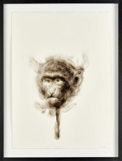 Diane Victor, 'Bad Word – Monkey', 2017