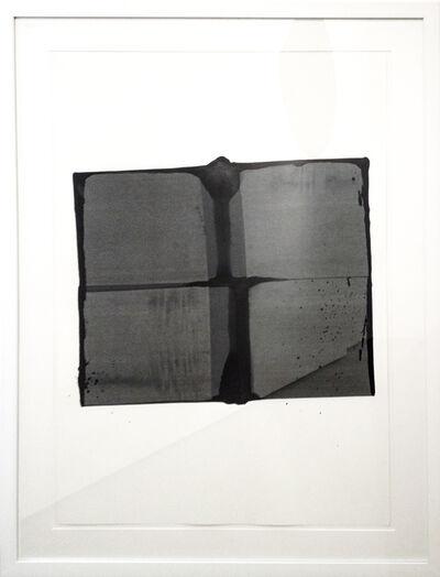 Markus F. Strieder, 'cabane', 2015