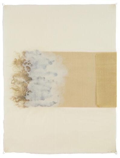 Ann Hamilton, 'poche', 2014