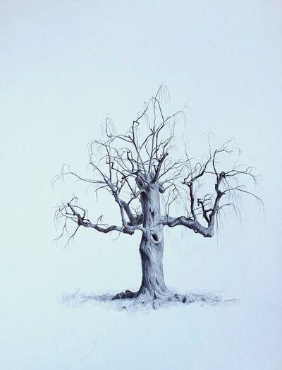 Dina Brodsky, 'Untitled (Spirit Tree)', 2020