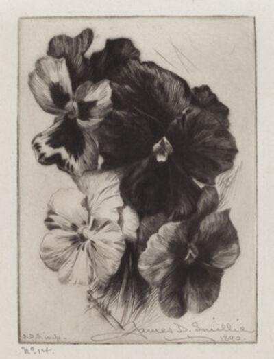 James David Smillie, 'A Bunch of Pansies', 1890