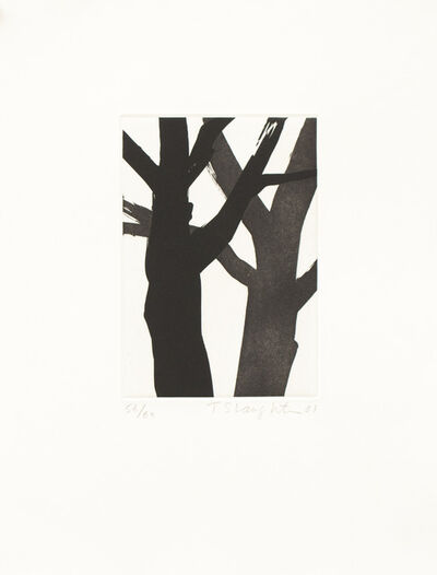 Tom Slaughter, 'Two Trees', 2001