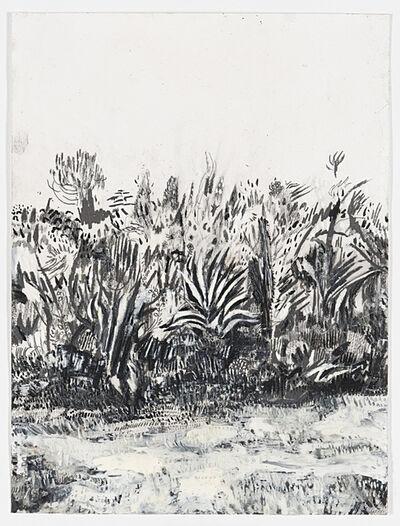 Raffi Kalenderian, 'Cactus Garden', 2015