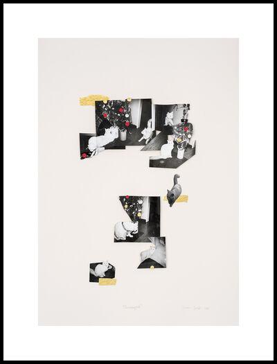 Sitaara Ren Stodel, 'Unwrapped', 2020
