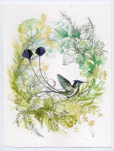 Ashley Cecil, 'Spatuletail Hummingbird on Green Wreath', 2015