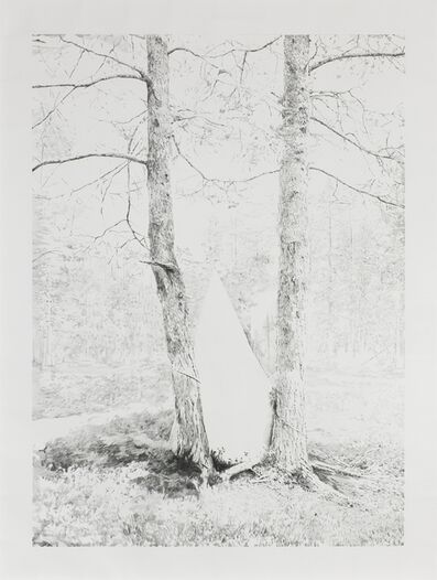 Axel Antas, 'Forest and Triangle', 2016