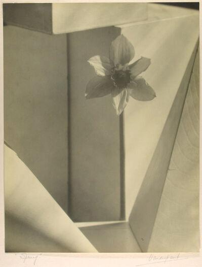 John Vanderpant, 'Spring', ca. 1936