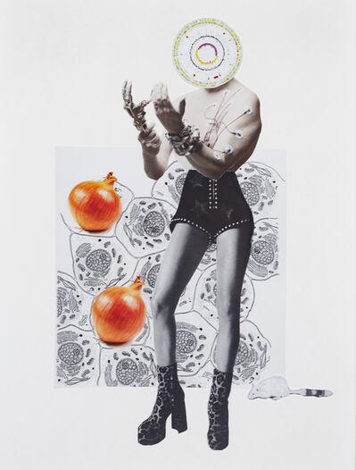 Margaret Hart, 'Untitled Onion', 2018-present
