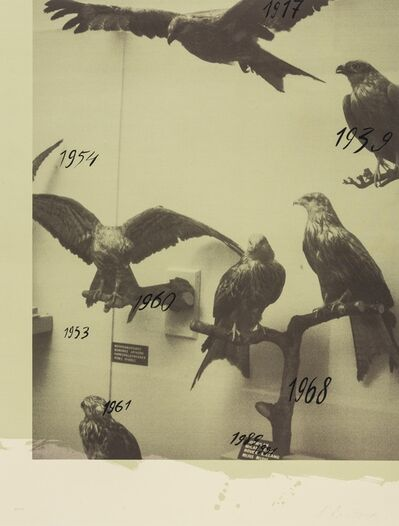 Andrei Roiter, 'Hawks (from Columbus: In Search of a New Tomorrow)', 1992