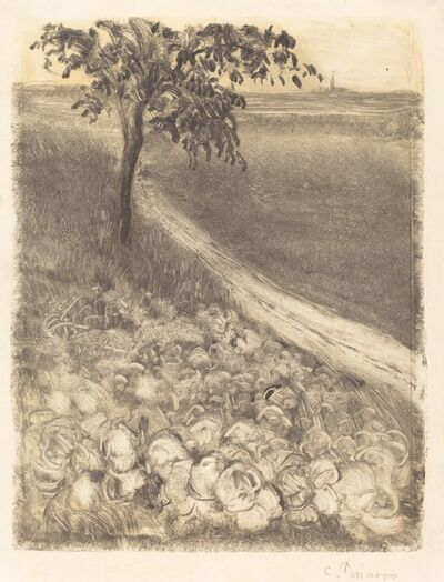 Camille Pissarro, 'Road by a Field of Cabbages', ca. 1880