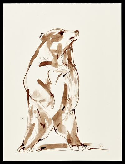 Stephanie Quayle, 'Brown Ink on Paper'
