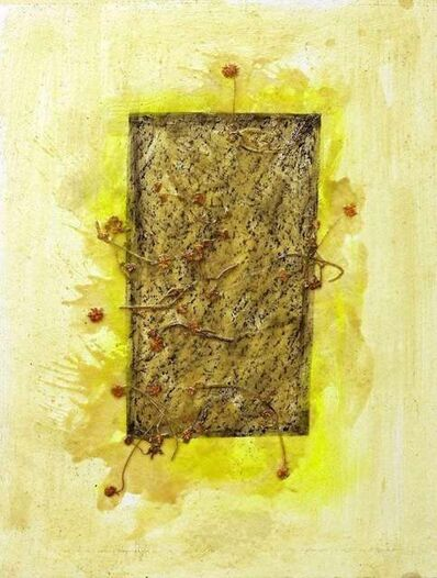 Claudio Palmieri, 'Grass Marks', 2008