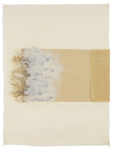 Ann Hamilton, 'Poche (7733.8)', 2014