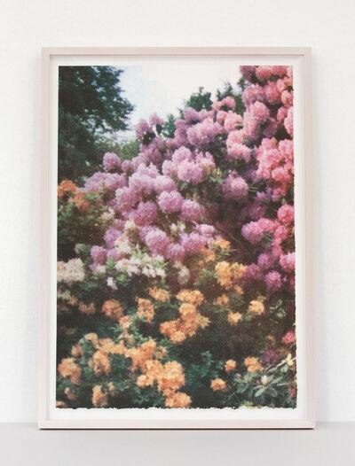 Elizabeth Corkery, 'Pink/Orange Florals', 2013