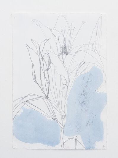 Andrea Rosenberg, 'Untitled 25.15', 2015