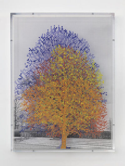 Charles Gaines, 'Numbers and Trees: Tiergarten Series II: Tree #4', 2018