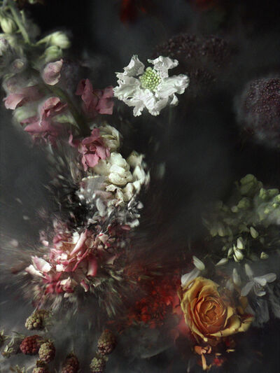 Ori Gersht, 'Time After Time, Untitled 2', 2006