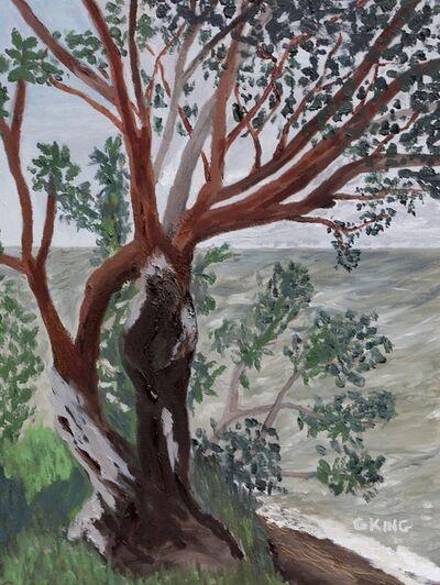 Glenda King, 'Cool Cotton Park', 2020
