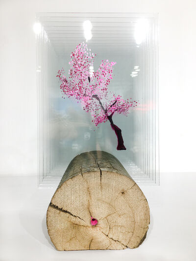 Ardan Özmenoğlu, 'Point of Pink', 2019