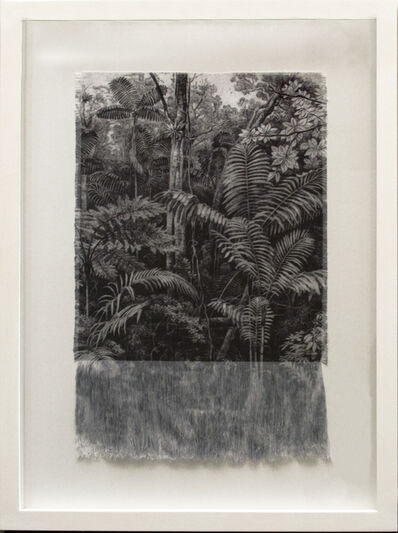 Ana González, 'Selva Antigua ', 2017