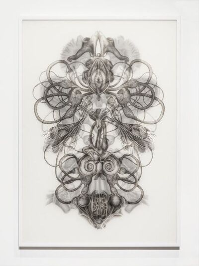 Angela Su, 'Rorschach Test No.1', 2016