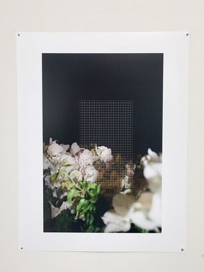 Ariana Sturr, 'Missed Connections', 2016