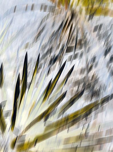Irene Imfeld, 'Zone of Transformation 2512', 2015