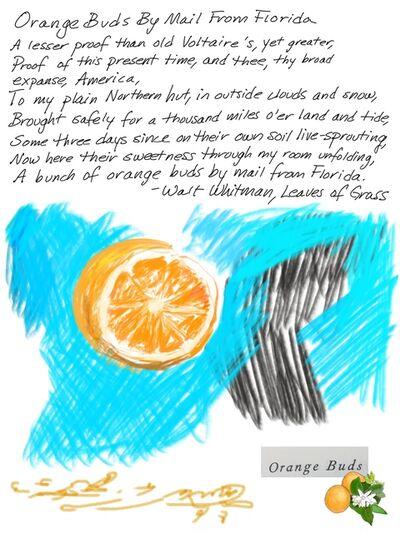 Nicole Maynard-Sahar, 'Orange Buds by Mail From Florida', 2017
