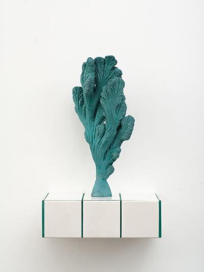 Zhang Ruyi 張如怡, 'Individual Plant–10', 2018