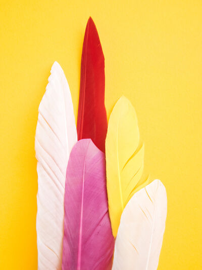 Maria Piessis, 'Feather or Not 6'